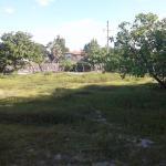 Pé no Parque Atins, Barreirinhas