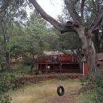 Under the Peaceful Oaks, Julian