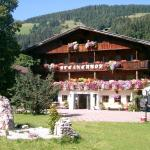 Hotellikuvia: Pension Steinerhof, Oberau