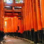 Coto Kyoto Fushimi Inari 1,  Kyoto