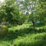 Garden Apartment, Constanţa