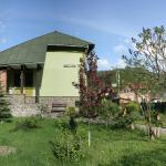 Sadyba Lesivykh, Slavske