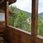 Pensiunea Jianu,  Albac
