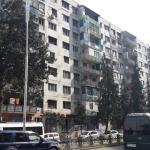 Koba Katsadze, Batumi