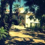 SURFER'S PARADISE, YOGA&FOOD GARDEN@COSTA AZUL, LOS CABOS, San José del Cabo