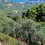 Gallis Villa, Skopelos Town