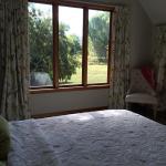 Lyttelton Harbour Vineyard Lodge,  Teddington