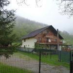 Villa Karina, Lepşa