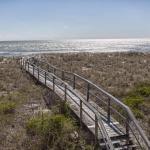 Miller's Whimsy, Carolina Beach