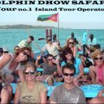 Dolphin Dhow Safaris,  Vilanculos