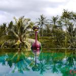 Capung Sakti Villas, Ubud