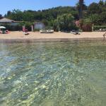 Suosogno sul mare, Capoliveri