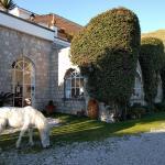 Tenuta Villa Tara, Ischia