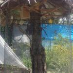 Family Summer House On Cityline,  Yerevan