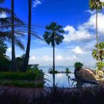 The Palm,  Pattaya North