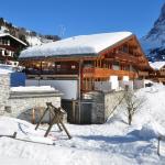 Apartment FSG01,  Grindelwald
