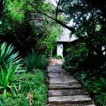 Birch Tree Cottage, Johannesburg