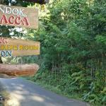 Pondok Salacca, Candidasa