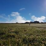 Grásteinn Guesthouse, Þórshöfn