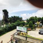 Single Tree Hotel, Nuwara Eliya