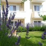 Apartment Branka, Banjol
