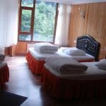 Yesil Vadi Hotel, Ayder Yaylasi