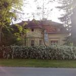 Villa Ricz,  Palić