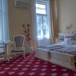 Hotel Astoria, Satu Mare