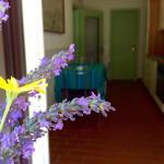 Appartamenti La Coccinella, San Vincenzo
