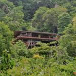 Lookout Inn Beach Rain-forest Eco Lodge, Carate