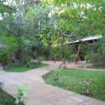 Dinuka Village, Habarana
