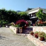 Villa Niki, Πλαταριά