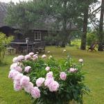 Männi Summerhouse, Kassari