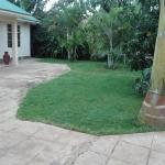 The Paradise In Backpackers,  Moshi