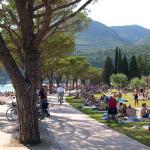 Delizia del lago,  Toscolano Maderno