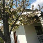 Vacation house Mileva, Doljane