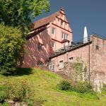 Hotel Pictures: Schlosshotel Hirschhorn, Hirschhorn