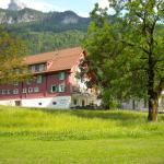 Hotel Pictures: Gasthaus Grafenort, Grafenort