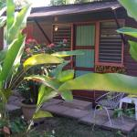 Secret Cabins at Firefly Beach Cottage, Negril