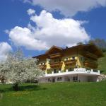 ホテル写真: Landhaus Servus, Viehhofen