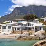 Seahorse, Cape Town