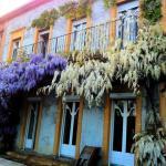 Hotel Pictures: Chambres d'hôtes Les Glycines, Clouange