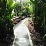 Rumah rose, Ubud