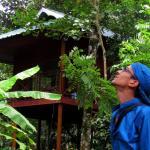 Monsoon Retreats, Thekkady