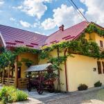Casa Andreea, Suceviţa