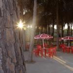 Villaggio Camping Pineta Mare,  Pizzo