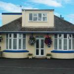BlueHaven, Newquay