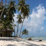 Amvoj Maldives Thulusdhoo, Thulusdhoo