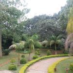 Hawkshead,  Harare