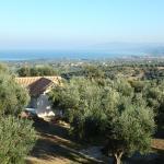 Ferienhaus Olive Garden, Kyparissia